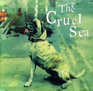 Cruel-Sea-Three-Legged-Dog-1
